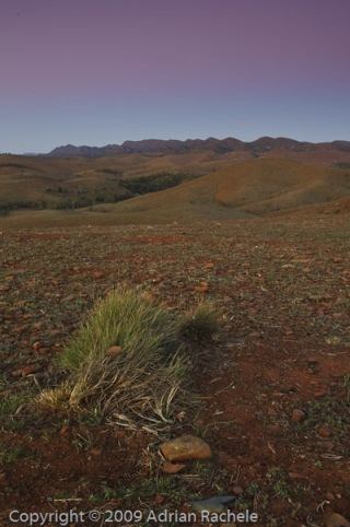 Wilpena Pound Sunset